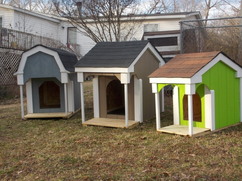 New painted doghouses 003