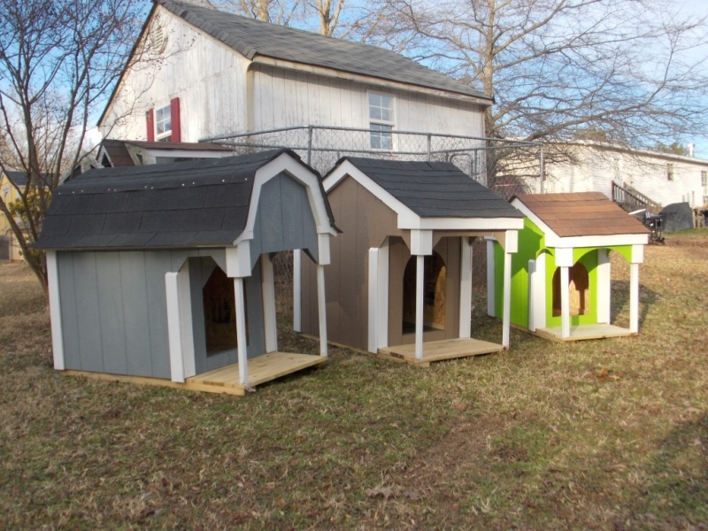 New painted doghouses 004