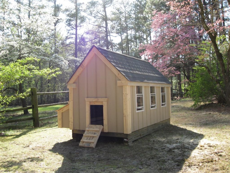 5x8x5_foot_gable_coop_003