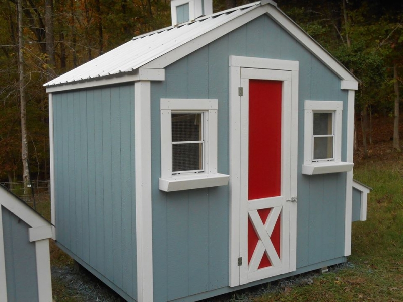 8x9x8 foot custom gable coop